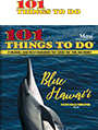 101 Things To Do Maui
